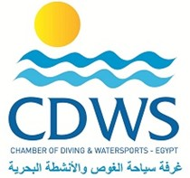 CDWS Red Sea office branch new location and contacts